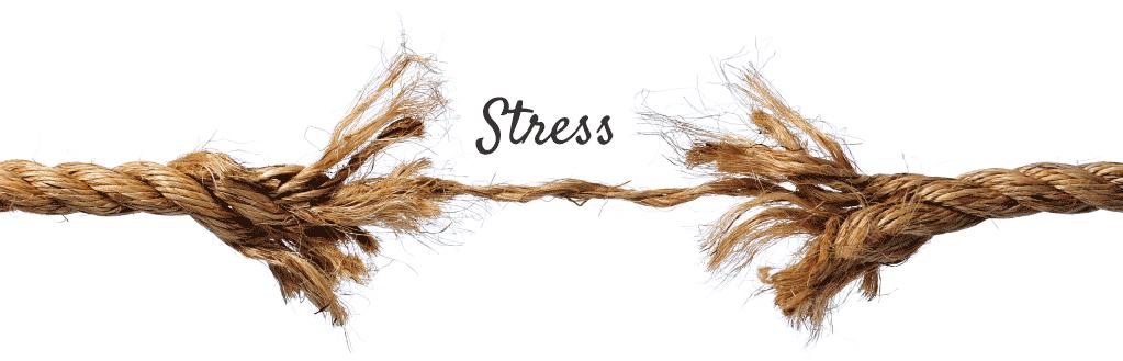 Lynn Allen Acupuncture - Stress
